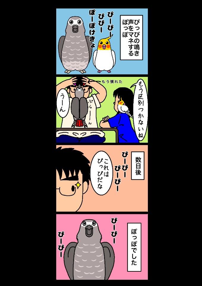 四コマまんが「ぴぴぽっぽ」第38話